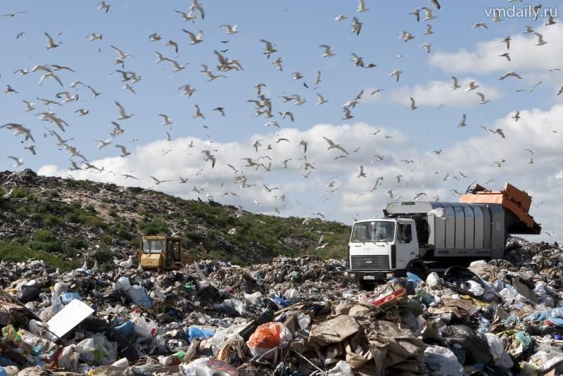 О мусоре — доверительно