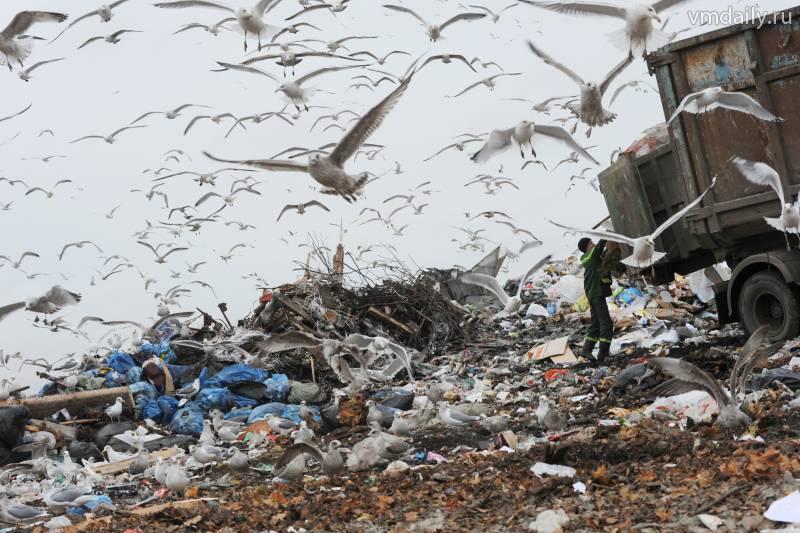 Новые территории избавят от мусорных полигонов