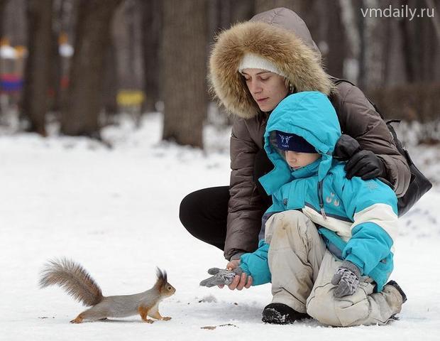 За воспитание на дому щербинским мамам платят зарплату