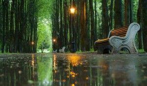 Парк в писательских дачах вблизи пос. Ватутинки.