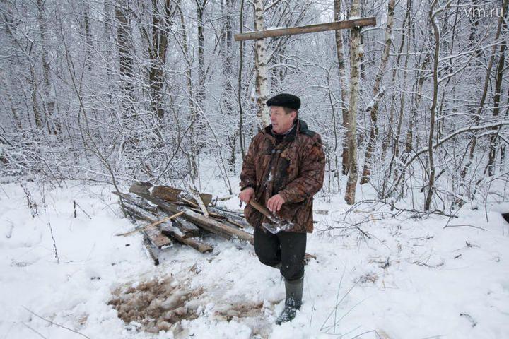 В поселении Внуковское пройдет санитарная вырубка сухостойных деревьев