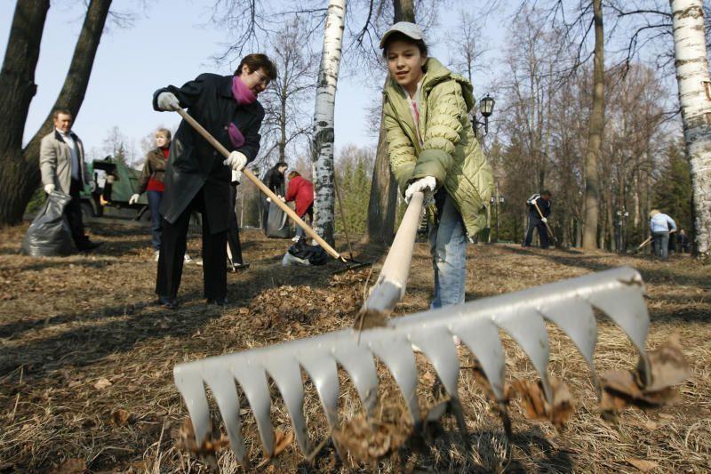 На субботнике в поселении Роговское высадили более 200 деревьев