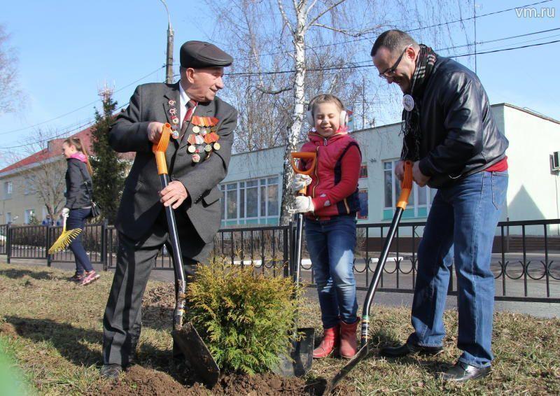 Рязановцы посадят 100 саженцев в рамках акции «Миллион деревьев»