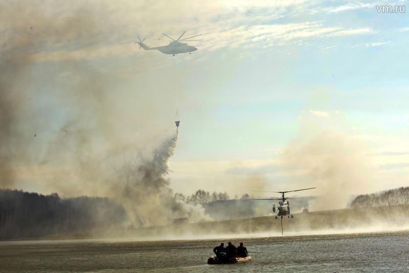 Лесных и торфяных пожаров в Новой Москве не было три года