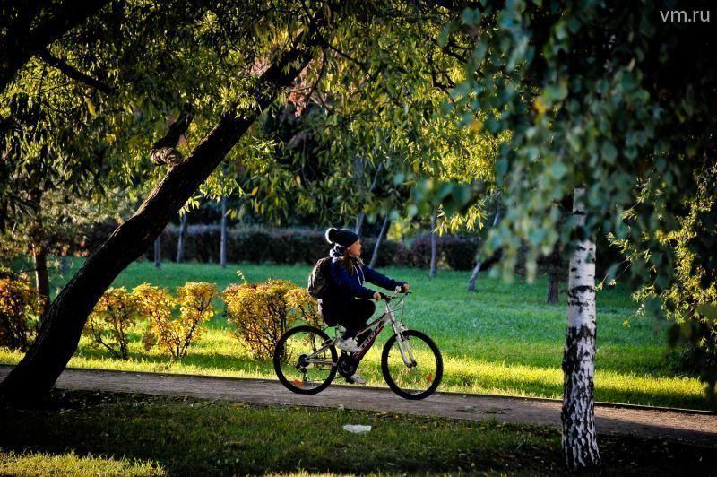 Велосипедистам низкий старт