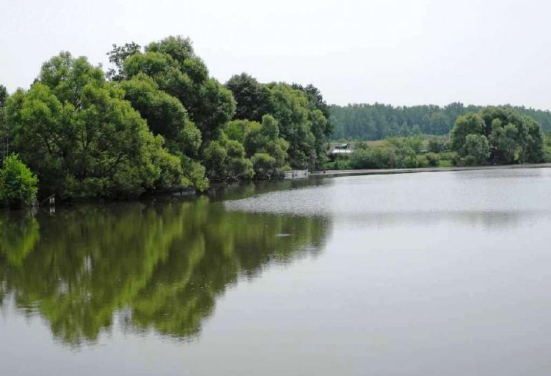 Новая Москва станет примером развития рек и прибрежных зон столицы