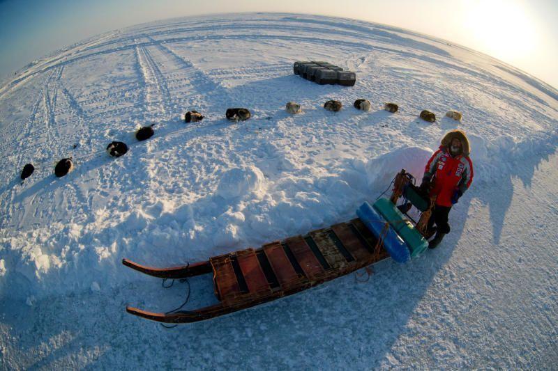 Арктика, жди!