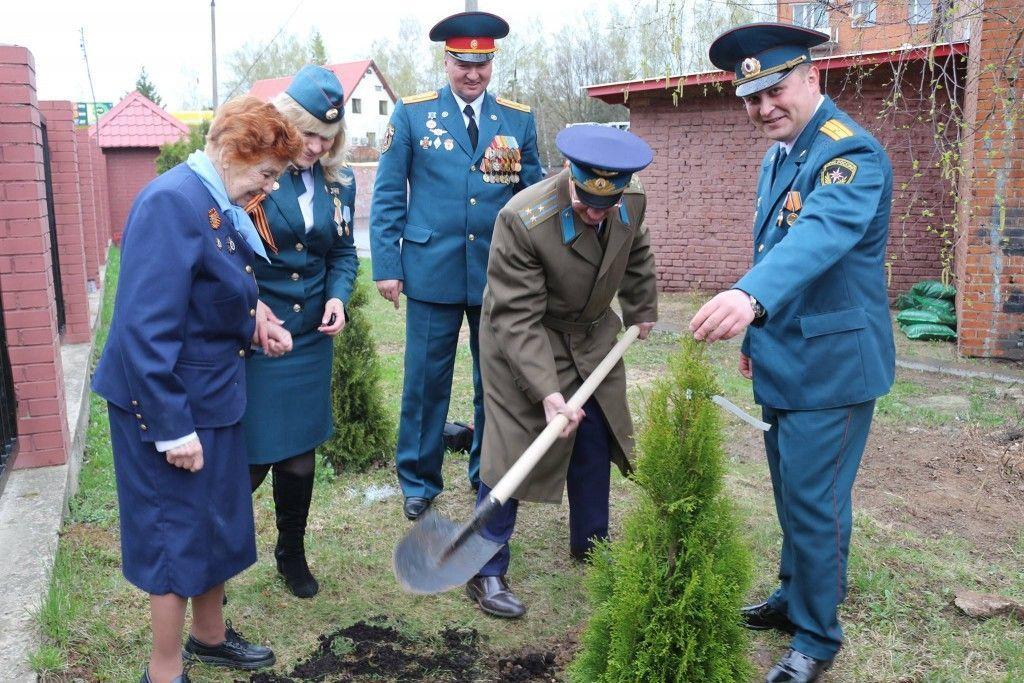 В пожарной части Троицка высадили аллею из 25 туй