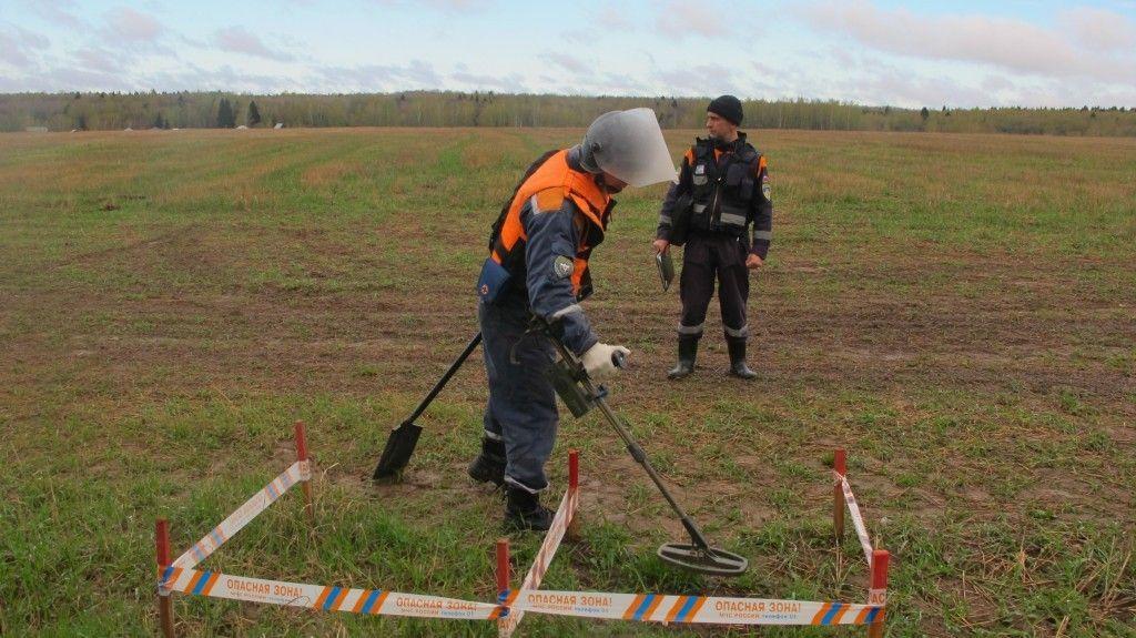 В поселении Роговское саперы обезвредили площадь в 35 гектаров