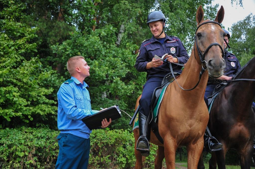 В парках Новой Москвы начнут работу конные патрули