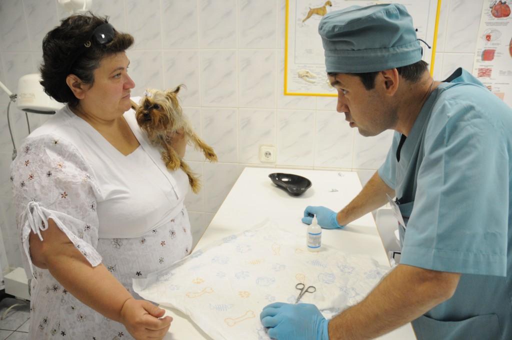 Администрация Кокошкино проведет вакцинацию животных