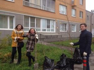 Молодые парламентарии Сосенского высадили деревья