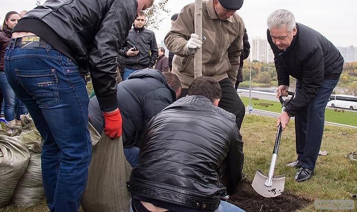 Собянин: Благоустройство Каширского шоссе улучшило условия жизни 300 тыс москвичей