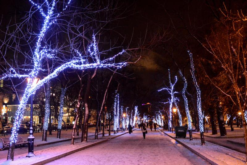 «Активные граждане» выбрали цвет зимней городской подсветки