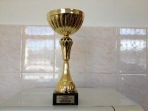 Волейболисты Филимонковского поедут на соревнования в Красную Пахру
