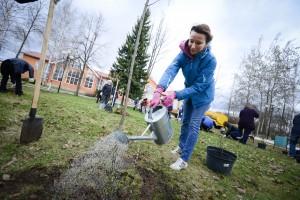 В Щербинке высадили свой «Миллион деревьев»