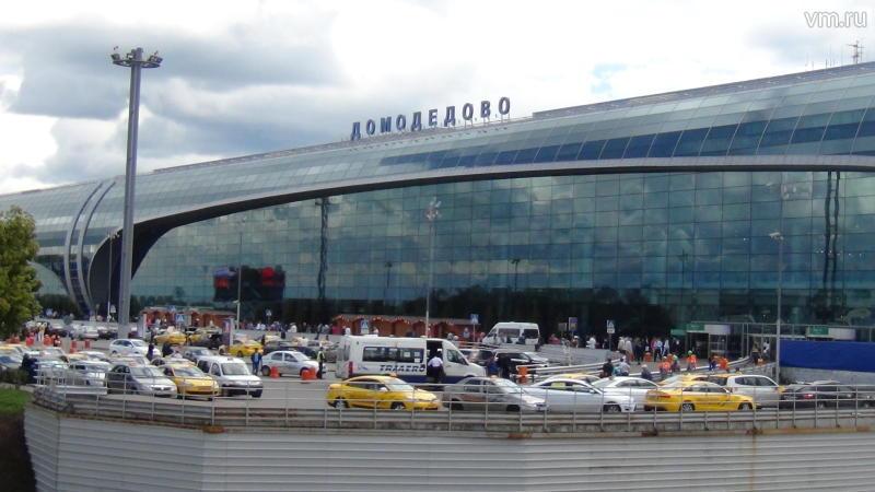 В аэропорту Домодедово задержали гражданина Греции с культурными ценностями 19 века