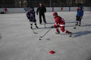 Поселения подготовят к спортивным зимним мероприятиям