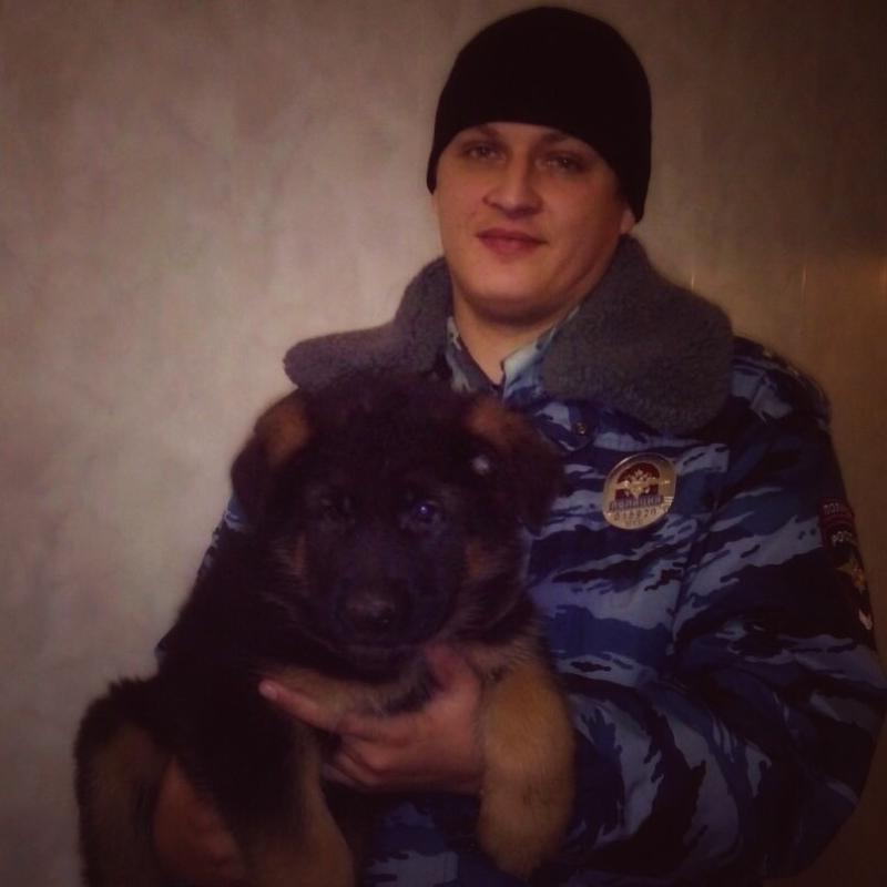 Полицейский щенок Добрыня будет подарен французам