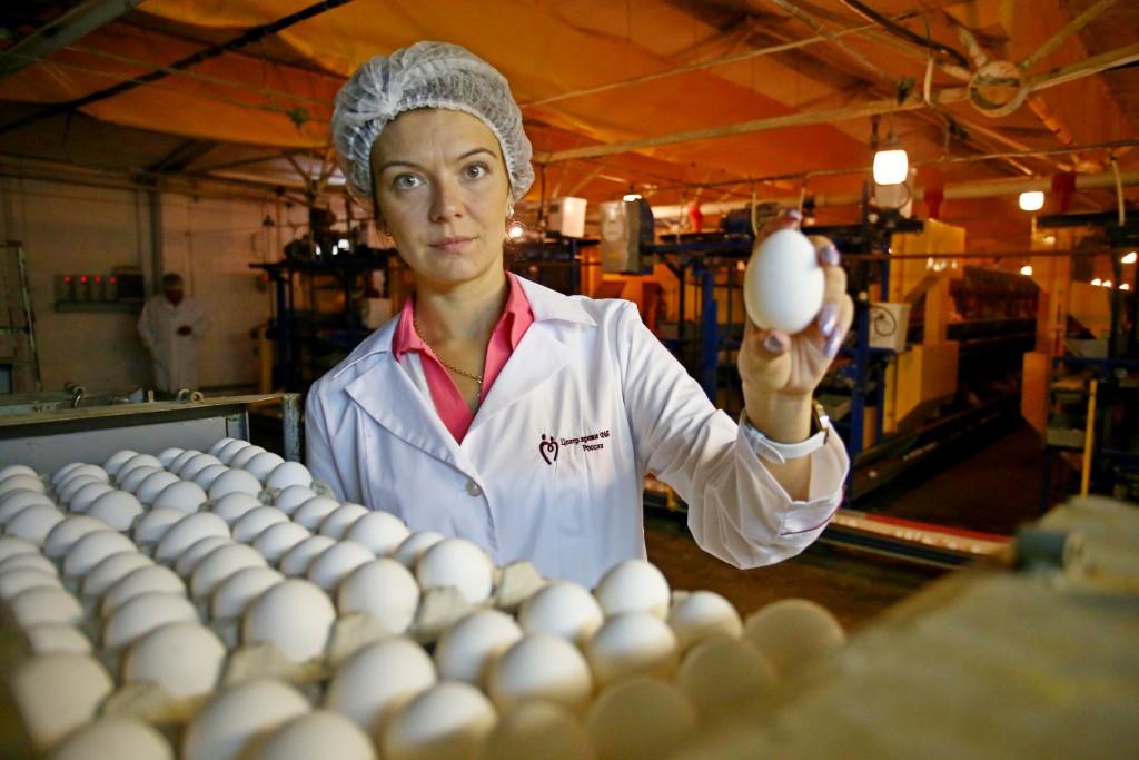 Превращение вареного яйца в сырое и память генов