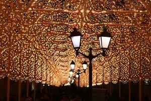 """Открытие ежегодного новогоднего фестиваля """"Путешествие в Рождество"""""""