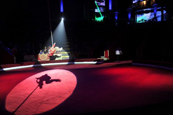 Цирк на Цветном бульваре выяснит причины падения гимнастки