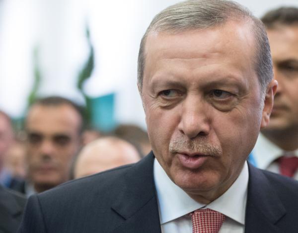 Президент Турции Эрдоган мог отдать приказ сбить Су-24