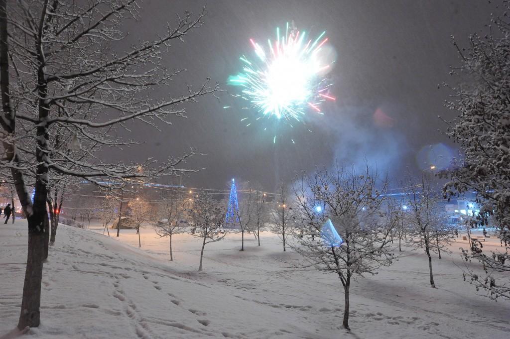 Мандарины подарили посетителям московского парка