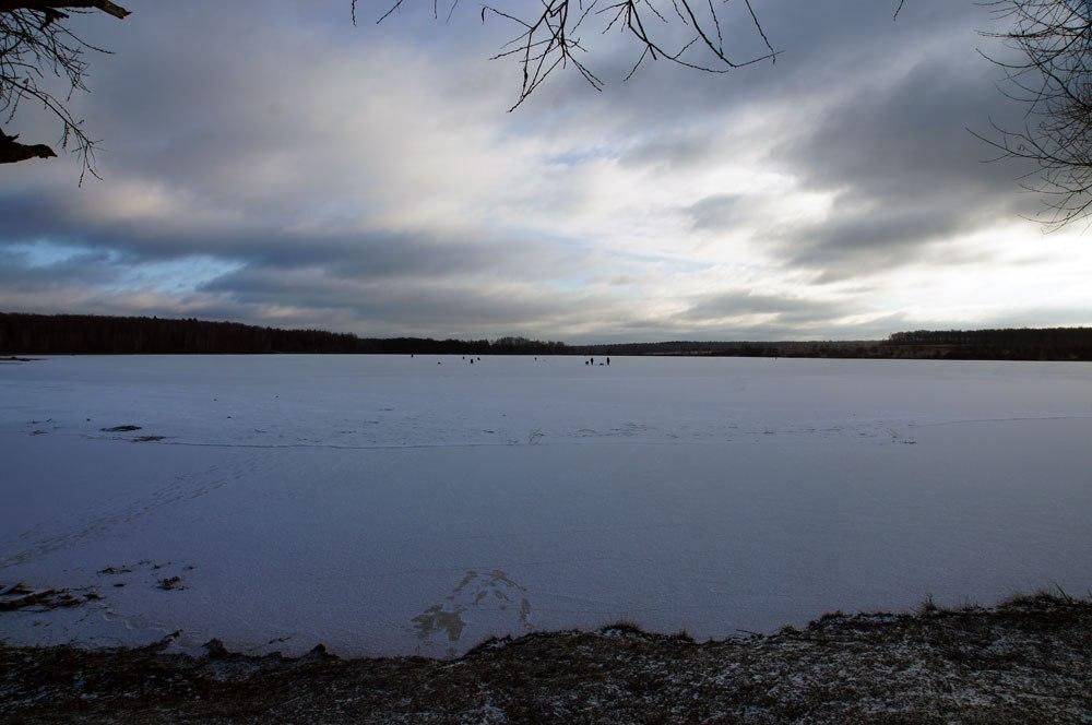 Сипягинский пруд стал самым «ондатровым» в Троицком округе