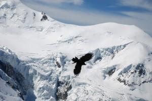 Установлено местонахождение тела мужчины за перевалом Дятлова