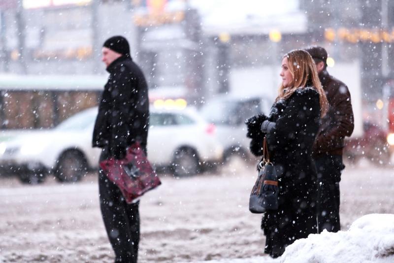 Мероприятие «Пешеходный переход» пройдет в Новой Москве