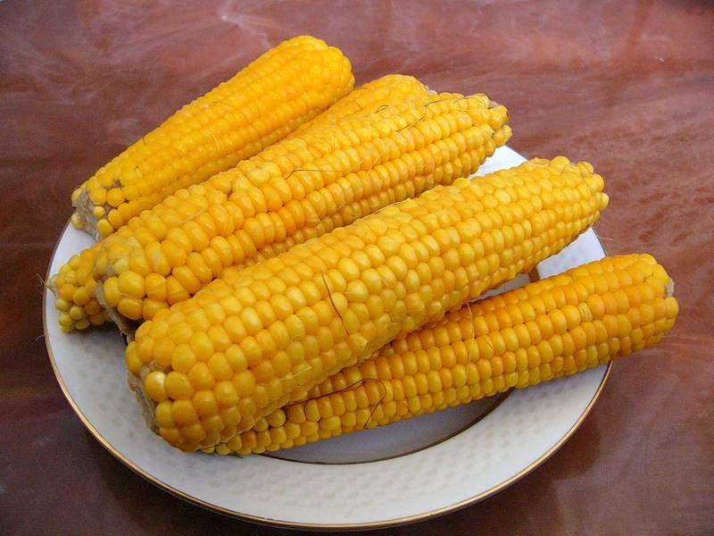Россия запретила американскую кукурузу