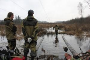 Парки Москвы отметят Всемирный день водно-болотных угодий