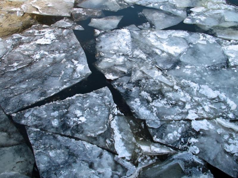 Мальчик, провалившийся под лед на Москве-реке, спасен