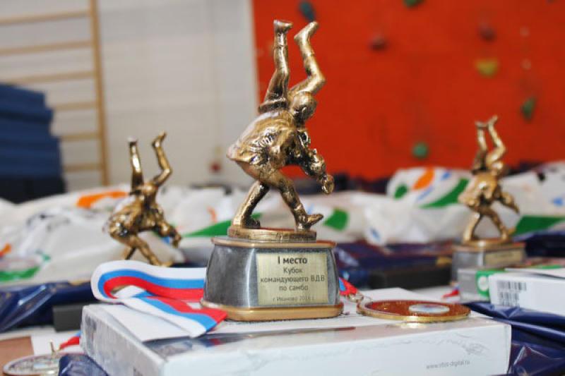 Москвичи вошли в тройку лучших на Кубке командующего ВДВ по самбо