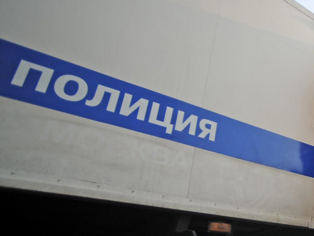 Полицейские задержали похитителей картин художника Саврасова
