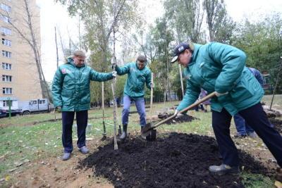Благоустройство центра Москвы осуществляется по новым принципам