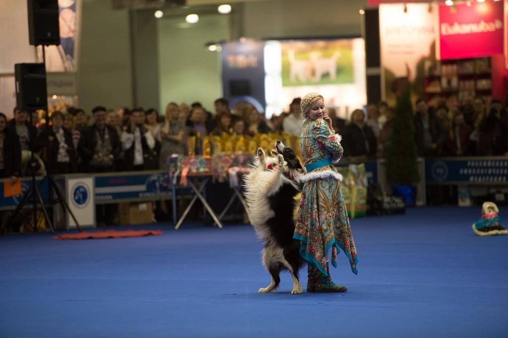 Москва впервые примет чемпионат мира по танцам с собаками