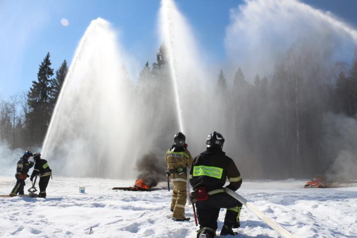 Лесной пожар потушат быстро: пожарные провели учения