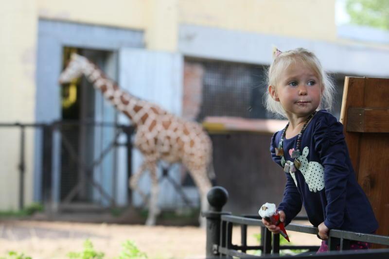 В Рассказовке появится жилой комплекс с зоопарком