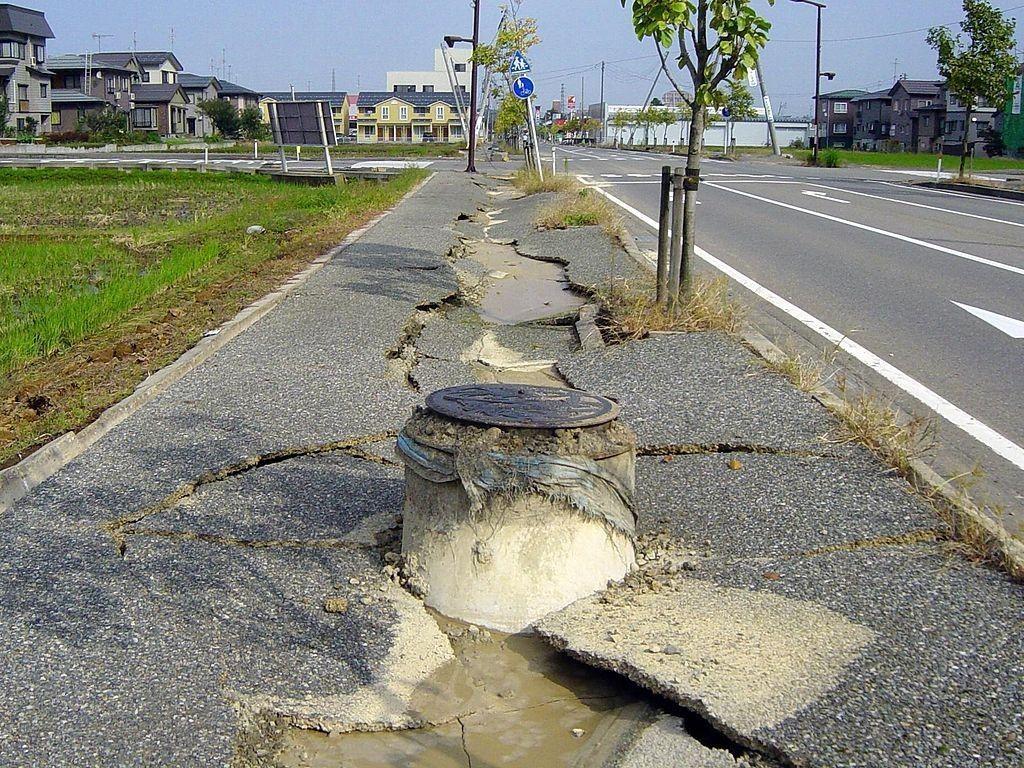 Девять человек погибли в результате землетрясения в Японии