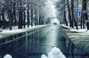 Апрельский снег в Москве. Фото: соцсети