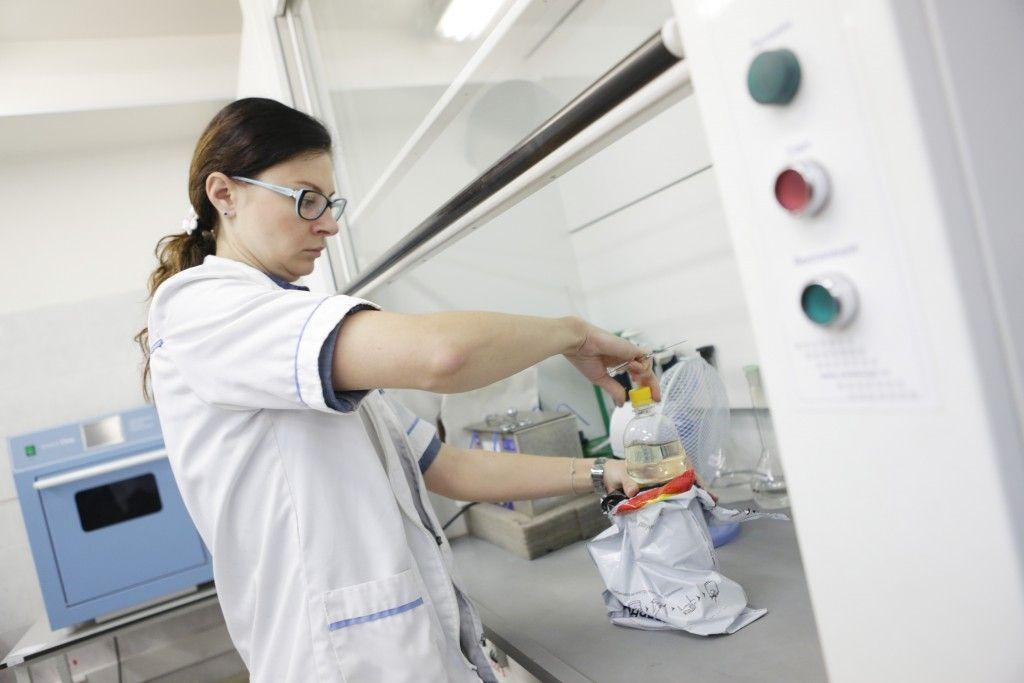Ученые из Московского государственного университета сделали новое открытие