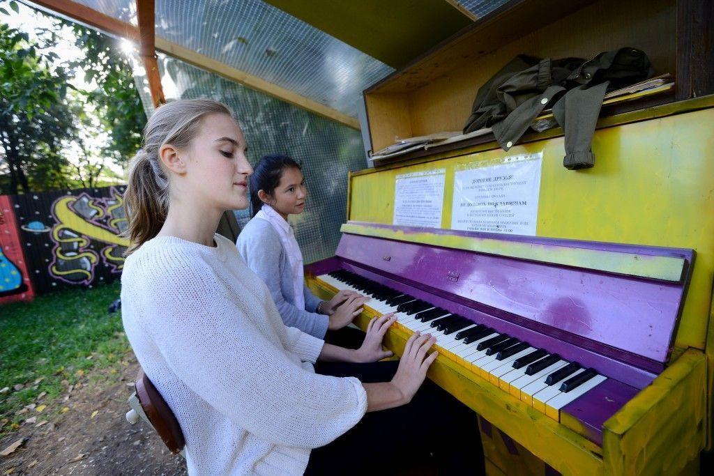 Пианино в кустах