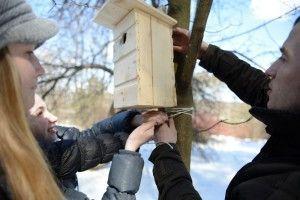 Акция «Поможем птицам вместе!» пройдет на ВДНХ