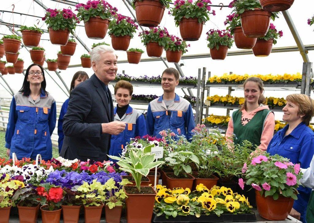 Сергей Собянин осмотрел Измайловский совхоз декоративного садоводства