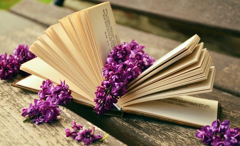 Всемирный день книг: Бумажный переплет или электронный каталог?