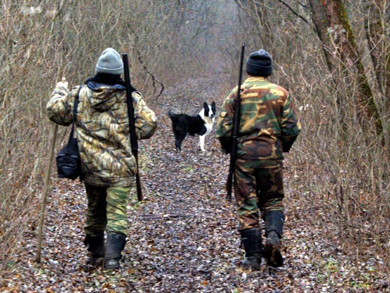 Сезон охоты на дичь откроется в Подмосковье 16 апреля