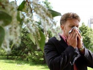 Всплеск сезонной аллергии на пыльцу зафиксирован в Москве
