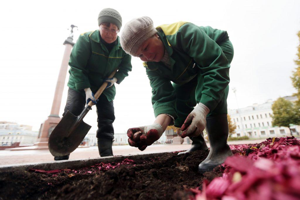 Завтра на ВДНХ в павильоне № 29 стартует выставка «Цветы наших садов». Фото архивное